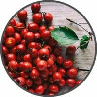 vigrx plus hawthorn berry