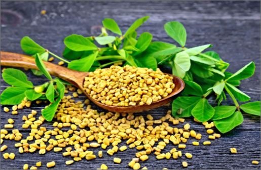 fenugreek-extract-ingredient